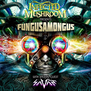 infected-mushroom-tickets_12-27-13_23_524b24abbccd0.jpg